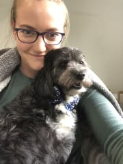 Loving pet walker/sitter, who will treat your pet like family