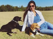 A reliable stay at home wife & pet sitter