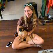 Loving pet sitter in Western Suburbs.