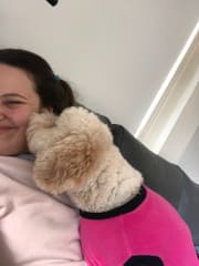 Caring and energetic pet sitter