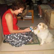 Just love pets! Yaroomba Coolum & surrounds.