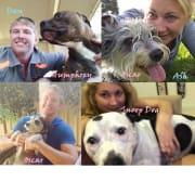 Adventurous Animal Lovers - House&Pet Sitters