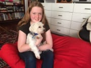 Lover of dogs, we offer super Friendly Homestays for Small Dogs in Lilyfield