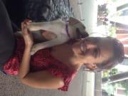 Sheridan pet loving and care - Sydney anywhere