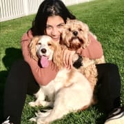 VERY Experienced Dog Owner/Pet Sitter & ANIMAL LOVER!