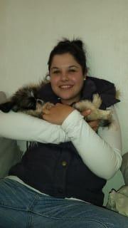 Pet nanny-walker-cuddler :-)