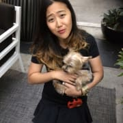 Need / Live for puppies - willing to travel to your adorable loved pet