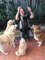 PAWSOME PET MINDER Loving Family In CASULA
