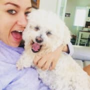 Friendly, reliable, experienced and caring dog sitters in Nundah Brisbane