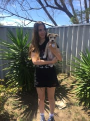 reliable, caring pet sitter, active, full of energy, responsible
