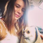 Doggie Nanny