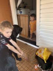loving pet family In Toowoomba