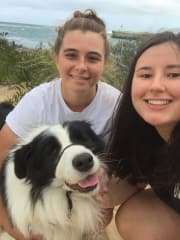Vet Students need animals to love