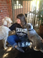 Human who loves dogs in Fitzroy North. Minder, walker, feeder.