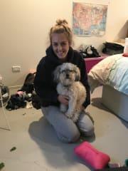 Dog enthusiast in Carlton North!
