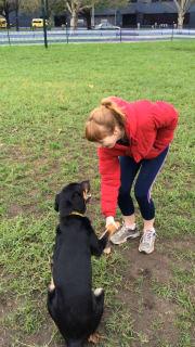 Loving Pet Sitter Couple With Plenty Animal Experience
