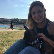 Loving Dog Walker/Sitter in and around Wollongong