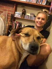 Daisy's Pet Loving Business