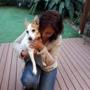 Dog Loving Family in Randwick
