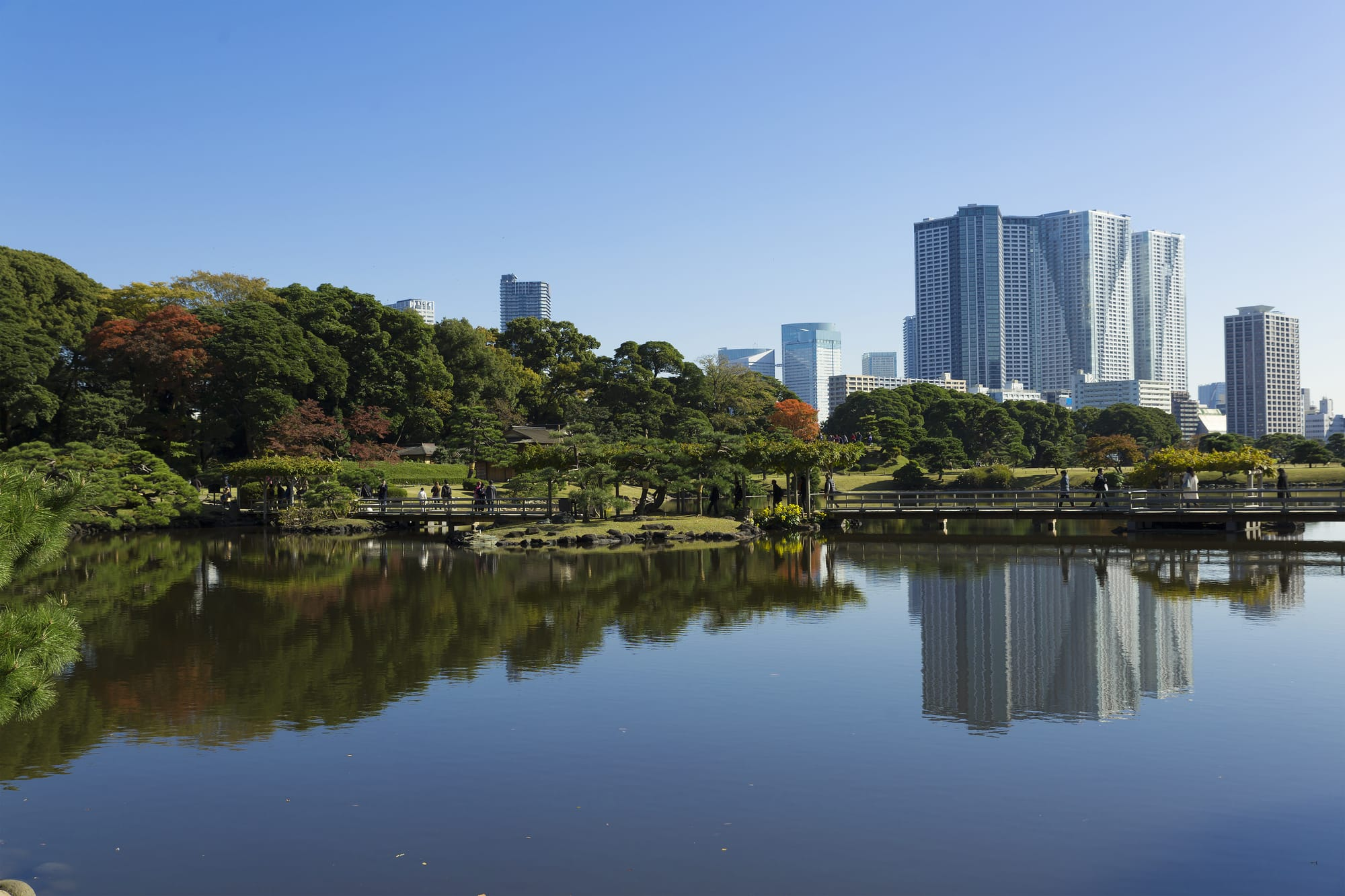 Trace the Tokugawa Family History in the South Garden