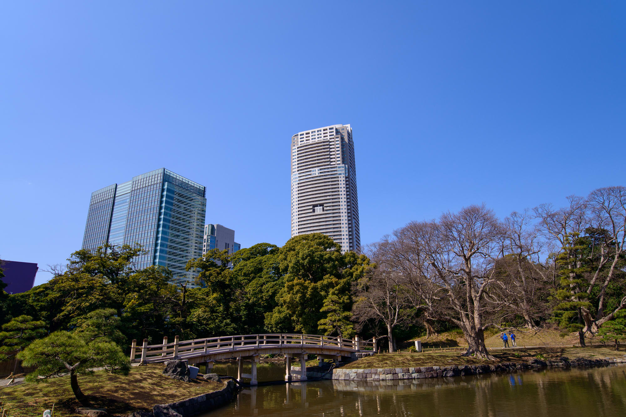 """Hama-rikyu Garden"": a Japanese Style Garden Where You Can Enjoy Flowers of the Seasons"