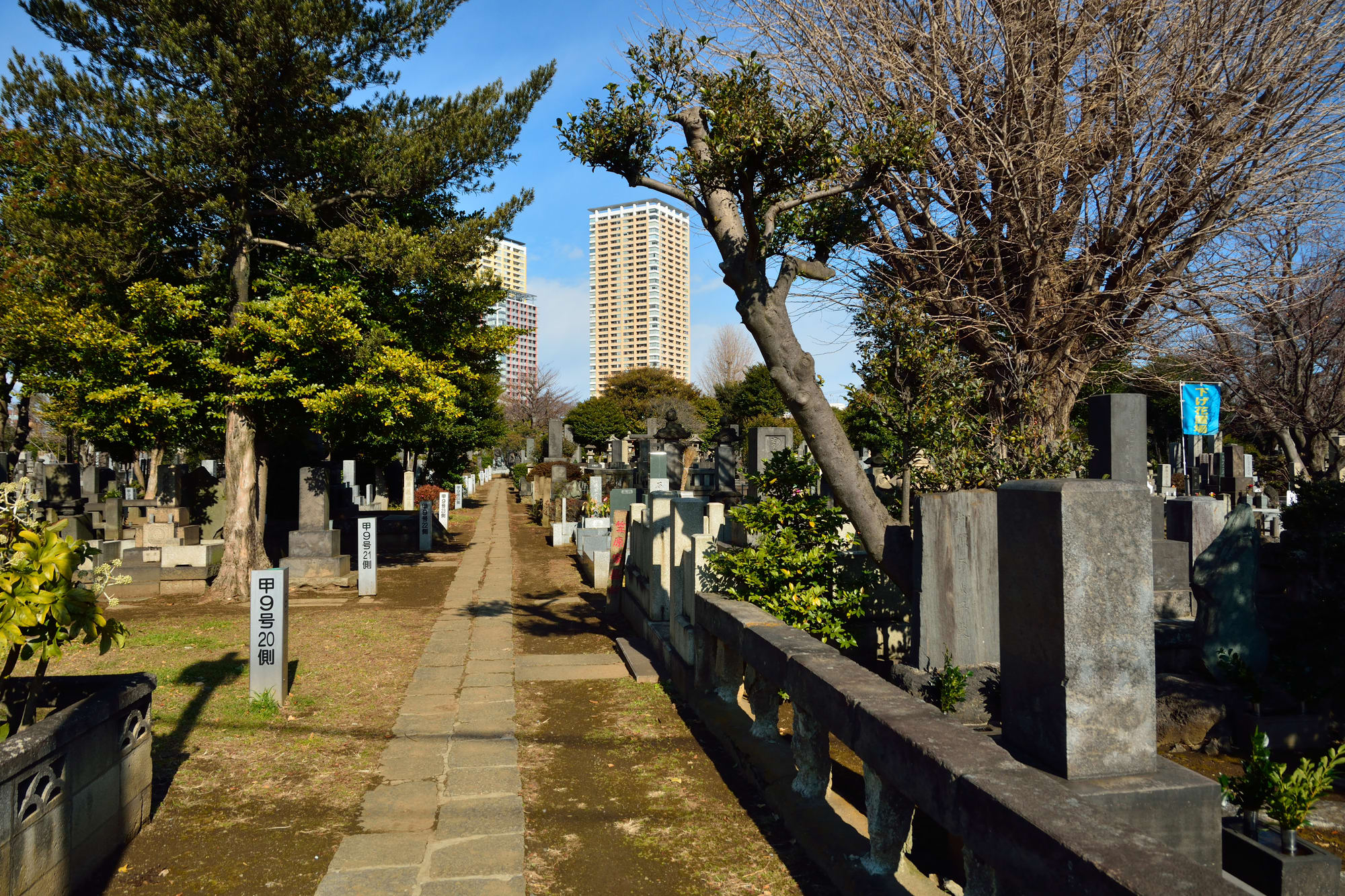 About Yanaka cemetery