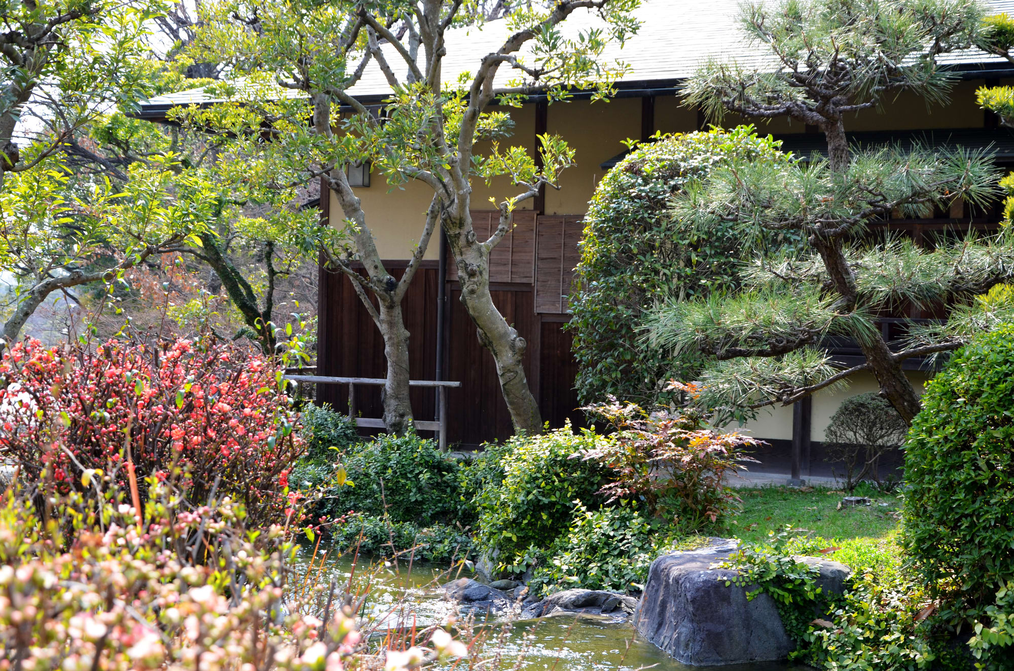 At the子規庵(Shikian) in remembrance正岡子規(Shiki Masaoka)