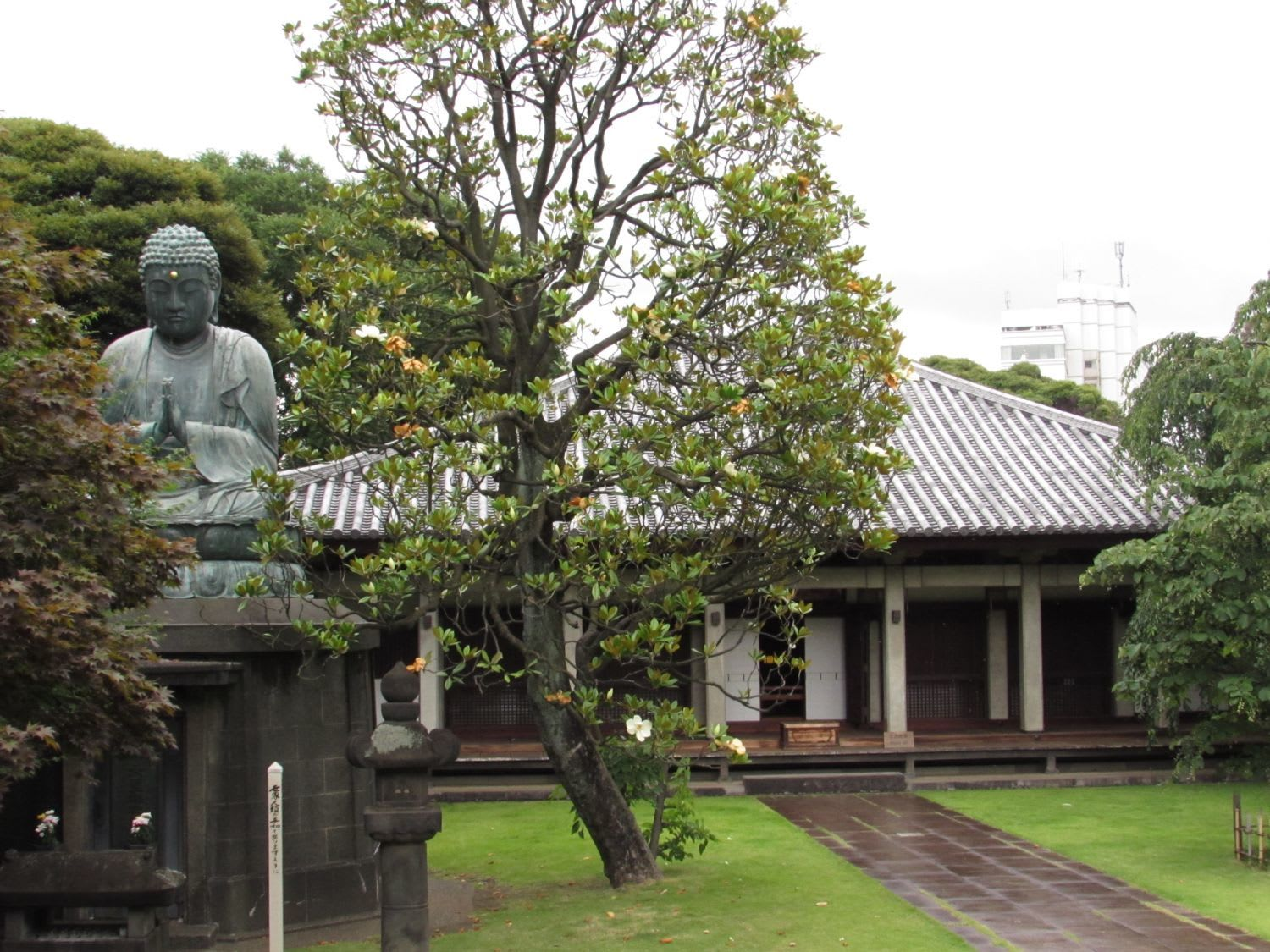 "About ""Tennoji"" Temple"