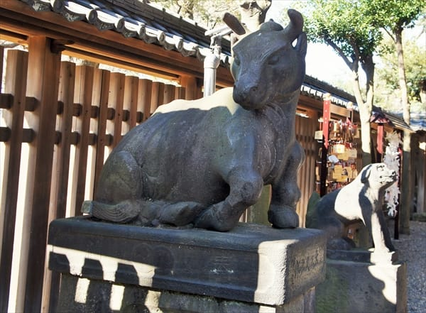 """Komauchi"" (a guardian ox) but not ""Komainu"" (a guardian dog)"