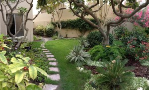 Front Garden - South