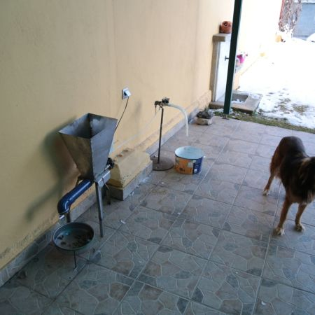 Automatic dog feeder/waterer