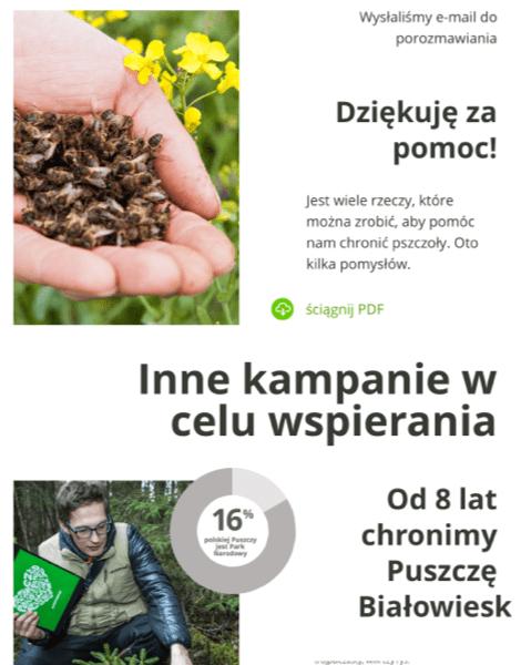 Greenpeace example