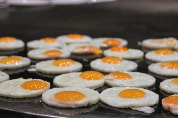 Flutur eggs