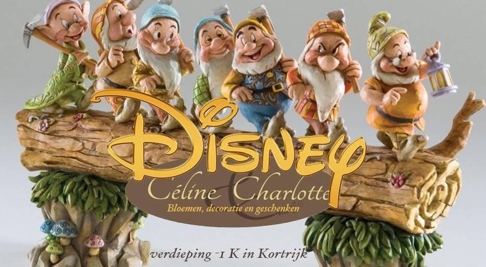 Ontdek de Disney collectie