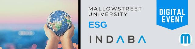 mallowstreet Digital ESG Indaba