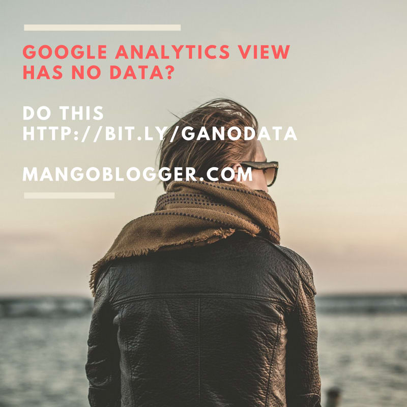 google analytics view has no data