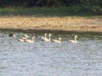 Keetham Lake