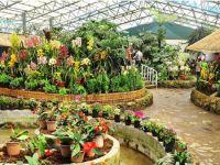 Kaziranga National Orchid and Bio-Diversity Park