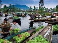 Floating Vegetable Market