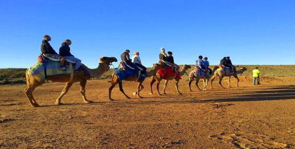 rajasthan camel ride_alt