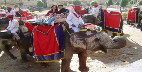 rajasthan elephant ride_alt