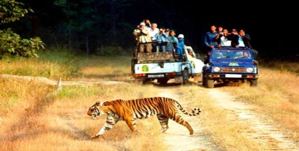 rajsathan wildlife tour_alt