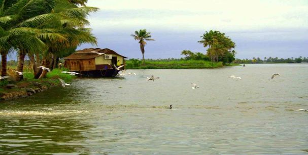 cochin_backwaters_alt