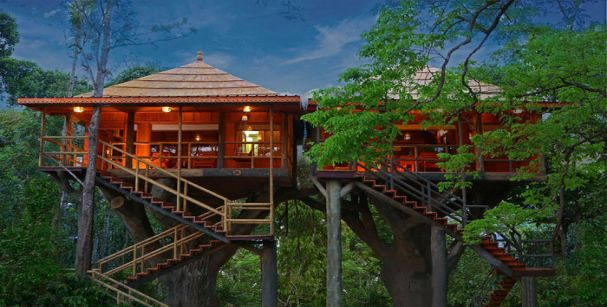 treehouse_in_kerala_alt