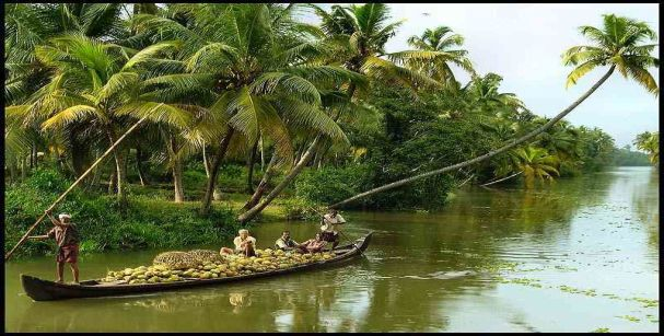 kuttanad_village_tour_alt