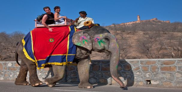 Elephant ride at dera amer_alt