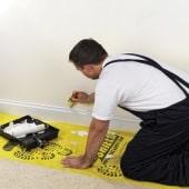 TIMco Shield Protective Film - 0.6 x 50 metres - Carpets)