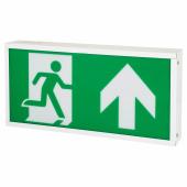 Emergency LED Exit Box)
