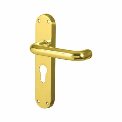 Carlisle Brass 19mm Return to Door Handle - Euro Lock Set - Polished Brass