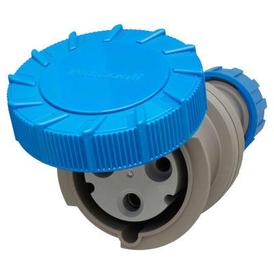 Lewden 63A 3 Pin Trailing Socket - Blue